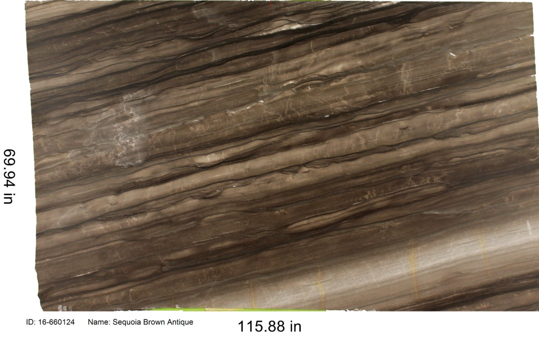 Sequoia Brown Antique Quartzite